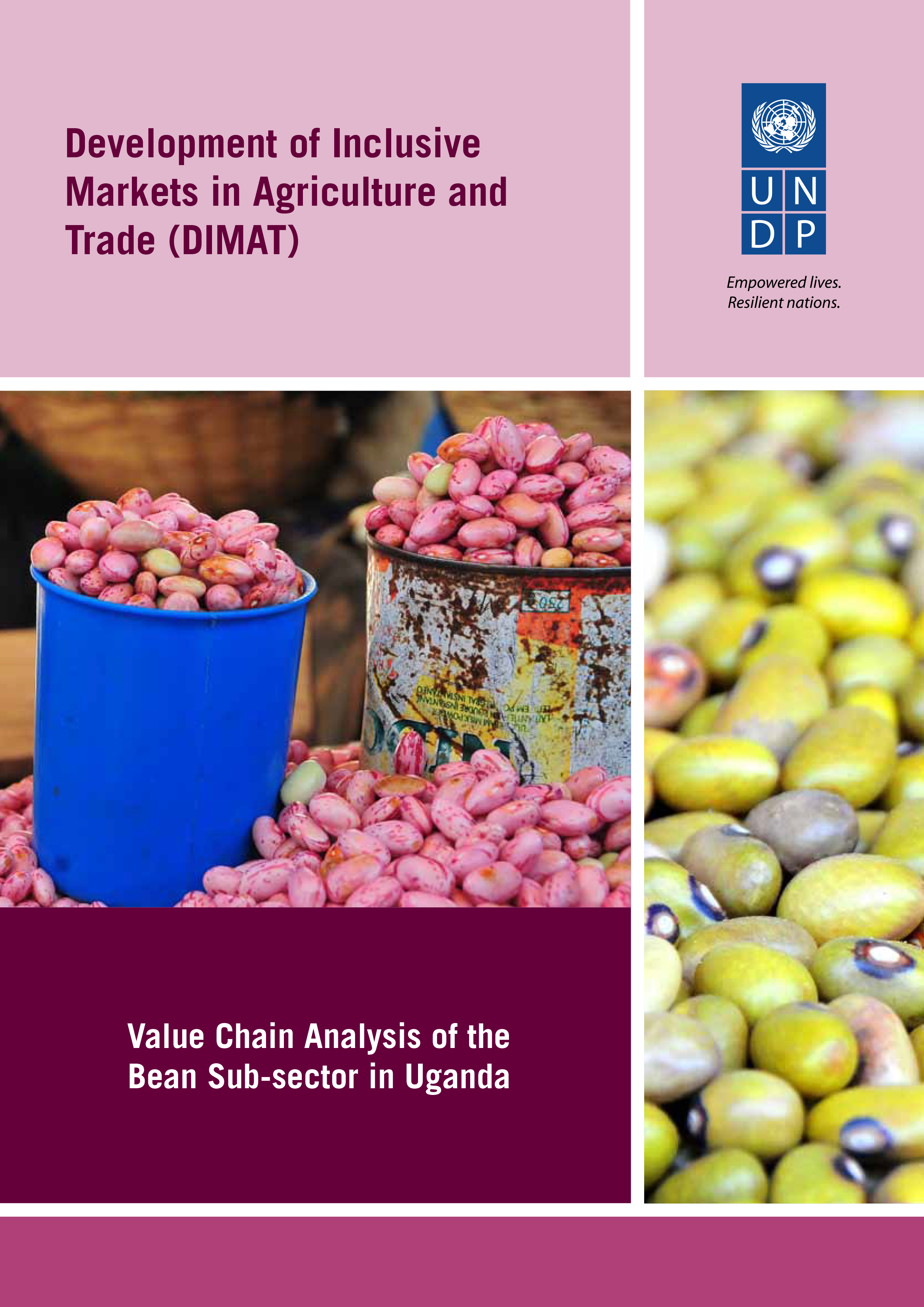 Value Chain Analysis of the Bean Sub-sector in Uganda - Kilimo Trust