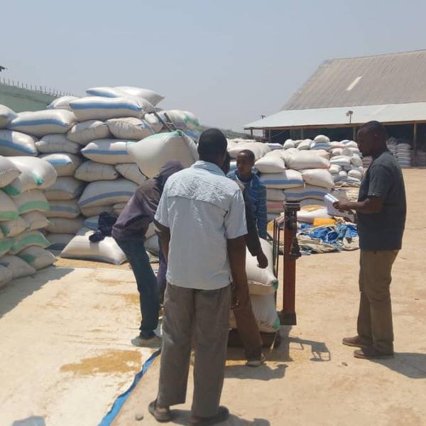 Competitive Africa Rice Initiative (CARI) Phase 1